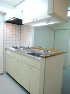 横浜市鶴見区の賃貸マンション ナイスアーバンスピリッツ生麦 302号室 キッチン