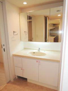 横浜市都筑区の賃貸マンション パークシティLaLa横浜 462号室 洗面室