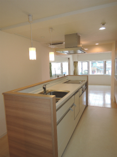 横浜市港北区の賃貸マンション  NICアーバンハイム綱島 202号室 キッチン